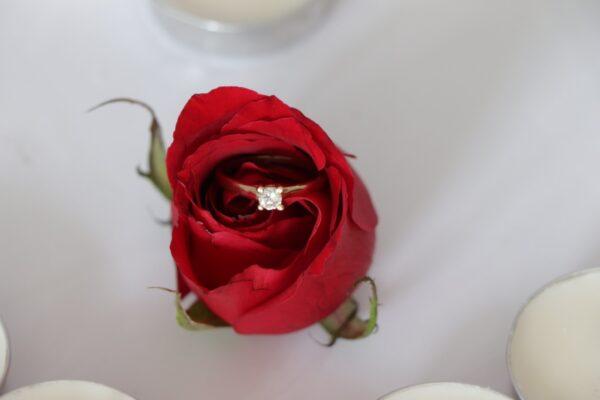 joyería chapala